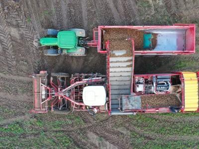 ziemniaki transportowane z naczepy kombajnu na naczepę traktora