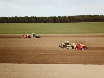 żółte traktory na polu